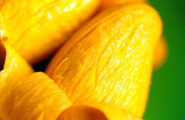 <p>Mangoes are rich in iron and vitamins A, C, and B6, all of which are beneficial for pregnant women. Vitamin A also helps fight infections and prevents vision problems in newborns. <em>(Image by ikarusmedia from Visual Hunt)</em> </p>