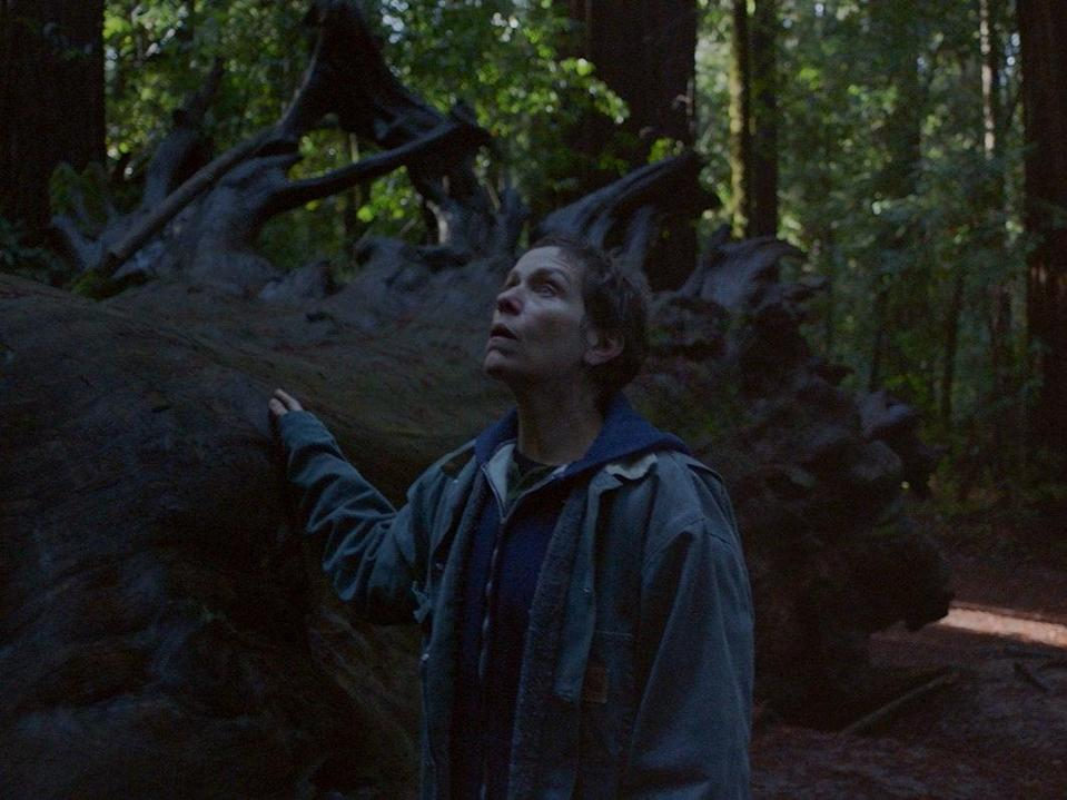 Frances McDormand in 'Nomadland'Searchlight Pictures