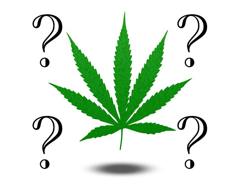 Marijuana leaf surrounded by four question marks