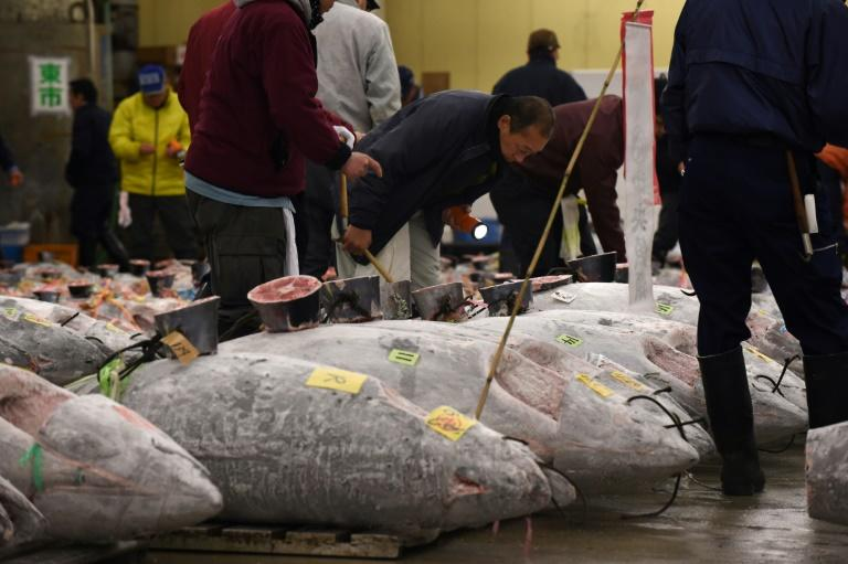 Tsukiji fish market ends 83 years of business for relocation