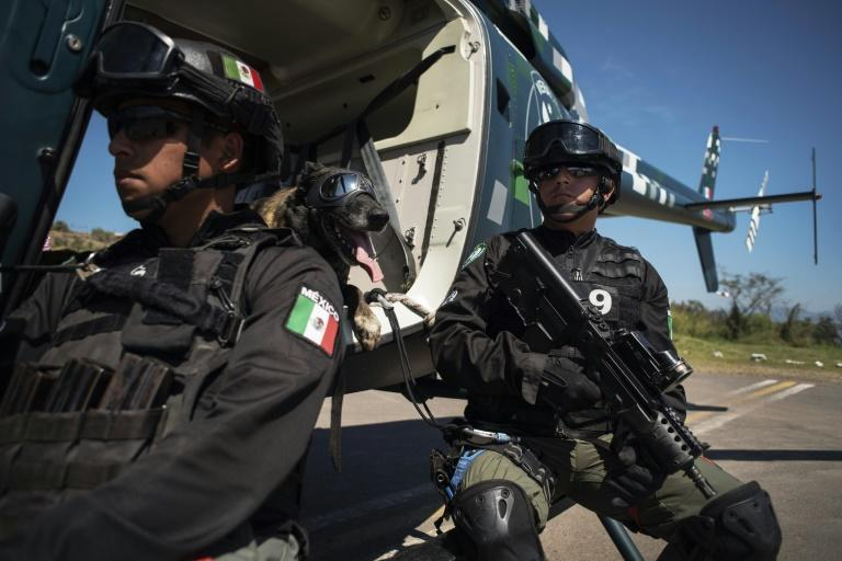 A sniffer dog and trainer take part in multi-nation drills in Veracruz in eastern Mexico