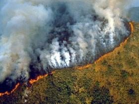 Brazil levies USD 8.7 million in fines over fires