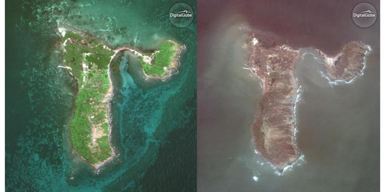 Aerial photos of Cayo Santiago before and after the storm. (Noah Snyder Mackler, University of Michigan)