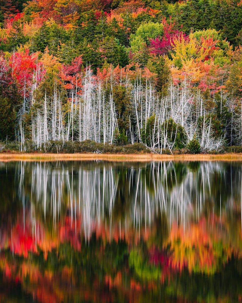 """<p>Just along Maine's Frenchman Bay, you'll find this gorgeous New England town. It's connected to Acadia National Park, and honestly, this photo speaks for itself.</p><p><strong>RELATED: </strong><a href=""""https://www.goodhousekeeping.com/life/a28007534/fall-instagram-captions/"""" rel=""""nofollow noopener"""" target=""""_blank"""" data-ylk=""""slk:100 Best Fall Instagram Captions for All Your Gorgeous Autumn Photos"""" class=""""link rapid-noclick-resp"""">100 Best Fall Instagram Captions for All Your Gorgeous Autumn Photos</a></p>"""
