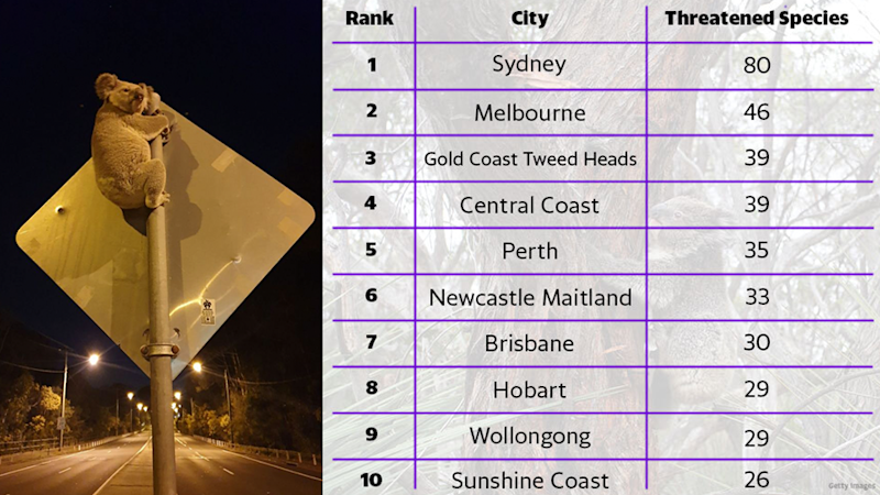 Sydney, Melbourne, Gold Coast, Central Coast, Perth, Newcastle, Brisbane, Hobart, Wollongong and Sunshine Coast are listed as the top 10 cities for harbouring endangered species.