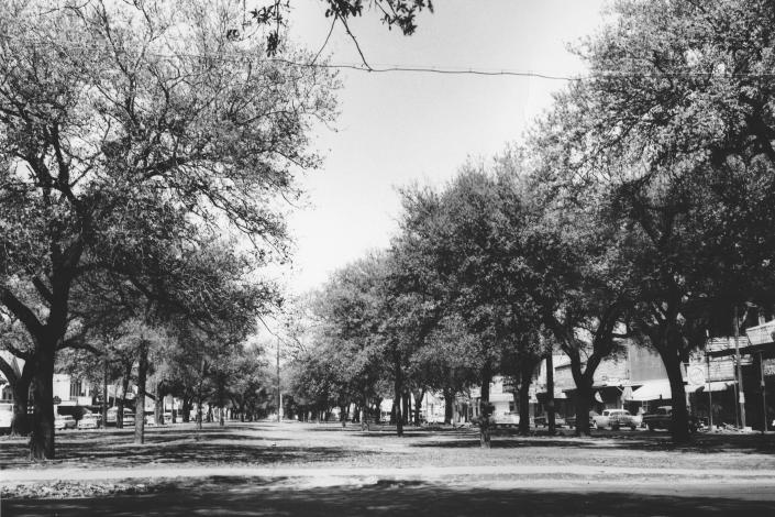 This undated photo provided by the City Archives & Special Collections, New Orleans Public Library shows tree-lined Claiborne Avenue at Dumaine Street in New Orleans before the trees were ripped out and an elevated expressway was built on top of it in the late 1960s. (City Archives & Special Collections, New Orleans Public Library via AP)