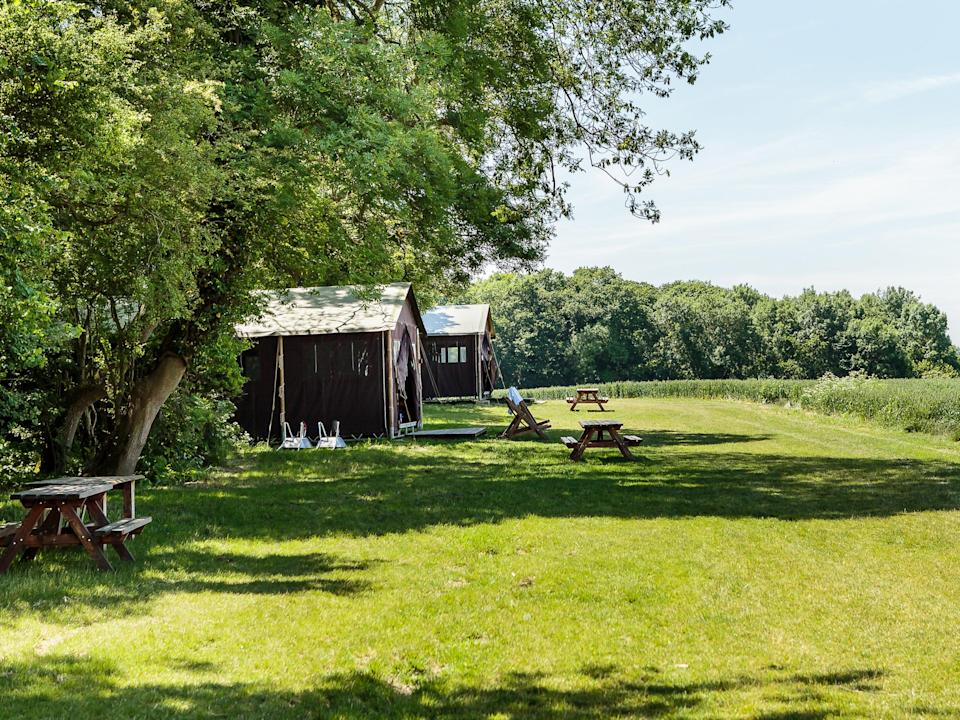 <p>Feather Down takes glamping to another level</p> (Feather Down Farm)