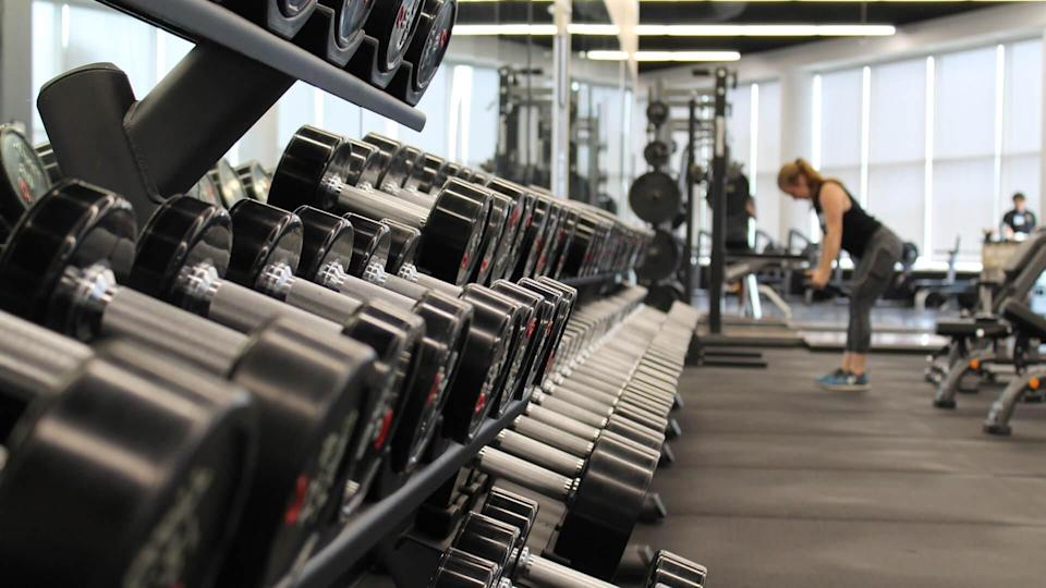 weights lined in a row at a gym