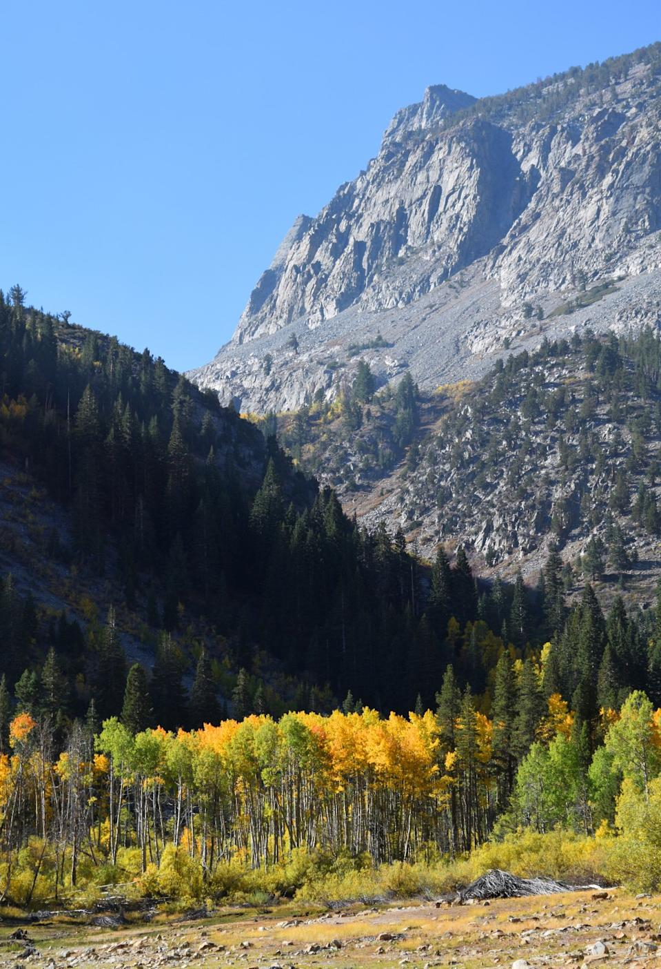 Fall colors surround Lundy Lake