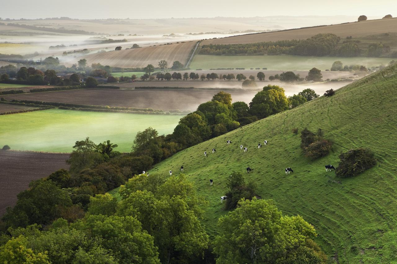 Marleycombe Hill, Wiltshire: Ken Leslie's highly commended image in the Classic View section captures the early morning mist as the dawn sun reaches into the valley. (Ken Leslie, Landscape Photographer of the Year)