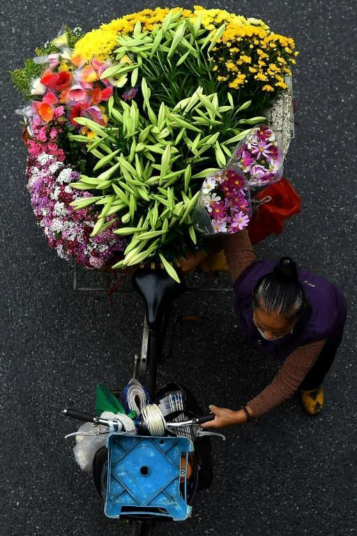 The fruit sellers, who are mostly women, start their day at 3 am and cycle up to 15 kilometres into Hanoi from the countryside to drop off fruit, vegetables and flowers