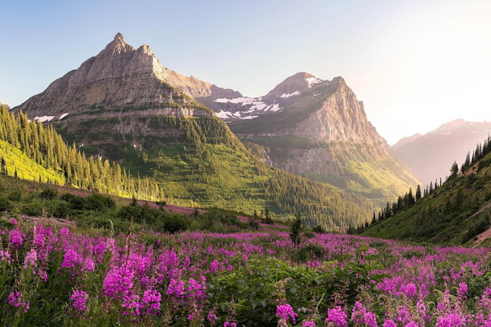 """Glacier National Park is one of the best places in travel in July for one big reason: <a href=""""https://www.cntraveler.com/gallery/7-national-parks-to-visit-during-wildflower-season?mbid=synd_yahoo_rss"""" rel=""""nofollow noopener"""" target=""""_blank"""" data-ylk=""""slk:wildflowers"""" class=""""link rapid-noclick-resp"""">wildflowers</a>. While you might consider spring to be the best time to see colorful flowers, the park's northern location in Montana means the blooms reach their peak in July and August. Hike along the Garden Wall Trail to see fields of white beargrass, pink fireweed, and yellow glacier lilies as far as the eye can see. When you've had your fill of hiking (and your phone has had its fill of photos), head back to <a href=""""https://www.cntraveler.com/hotels/united-states/bonner/resort-at-paws-up?mbid=synd_yahoo_rss"""" rel=""""nofollow noopener"""" target=""""_blank"""" data-ylk=""""slk:The Resort at Paws Up"""" class=""""link rapid-noclick-resp"""">The Resort at Paws Up</a>, a sprawling, 37,000-acre working cattle ranch in western Montana. Their safari-style canvas tents will make you feel like you're in the Wild West, while locally sourced meals and spa treatments are worthy of a five-star hotel."""