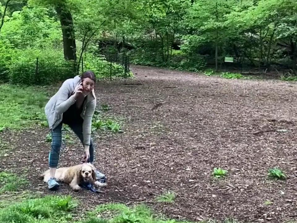 Video of the viral incident in Central Park, New York, in which Amy Cooper (pictured) phoned 911 on a Black bird watcher (Facebook/ChristianCooper)