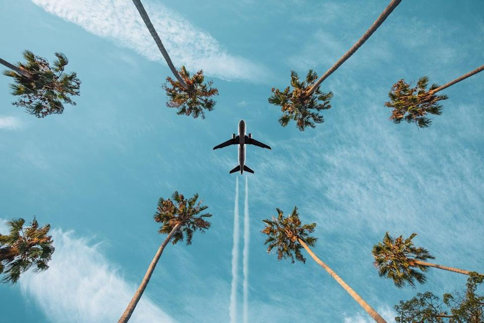 <p> 'While ministers pledge to get back to the normal of long-distance air travel they simultaneously pledge to include aviation in our national decarbonisation endeavour'</p> (Getty Images/iStockphoto)