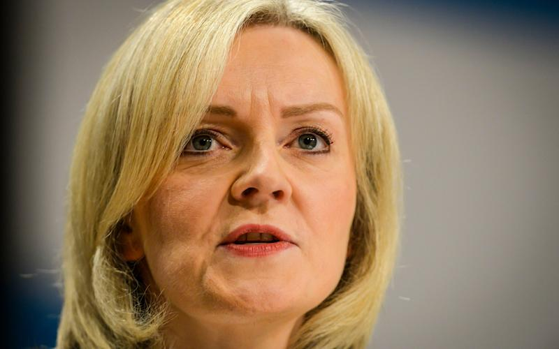 Justice Secretary Liz Truss has announced new measures to crack down on their use, including giving prisons power to jam the signals - Credit: Ben Birchall/PA Wire