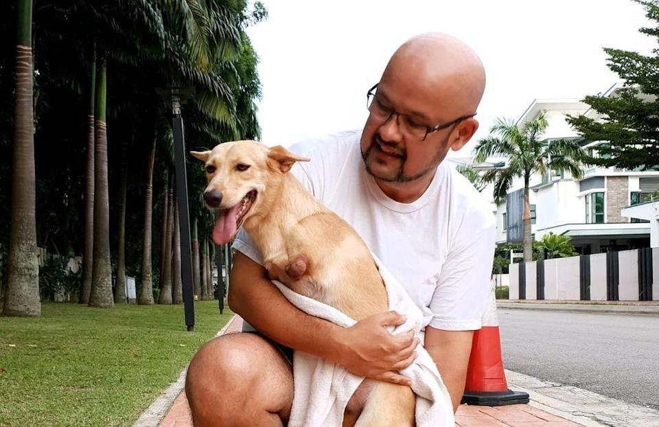 Harith said Marvella had been a 'loving companion' to him and his family since they adopted her in June last year. — Picture via Instagram/harithiskander