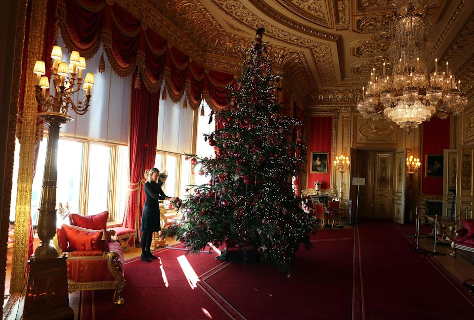Another massive tree can be found in a second part of the castle [Photo: PA]
