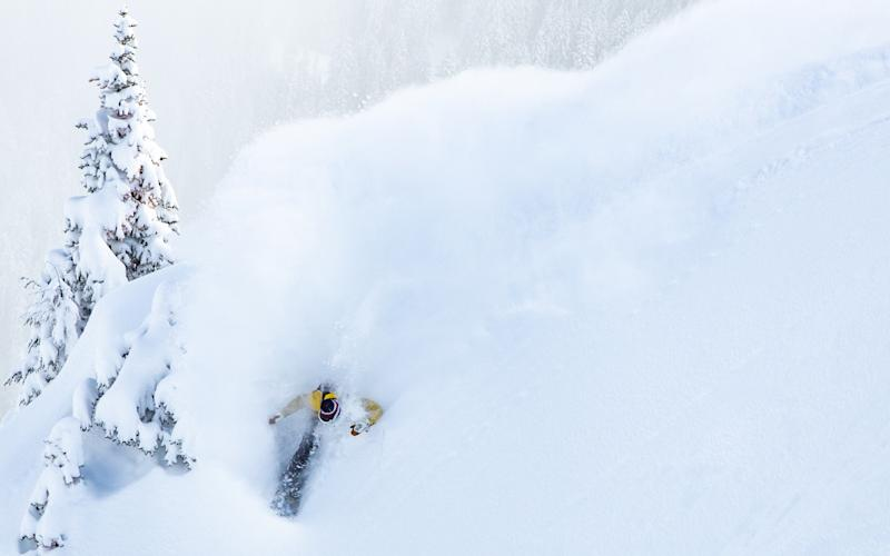 Resorts across the US, including Crystal Mountain in Washington, have seen an epic amount of snow since the start of 2019 - scott sullivan/alterra mountain co.