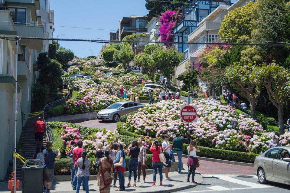 Lombard Street in San Francisco. Source: Wikimedia Commons