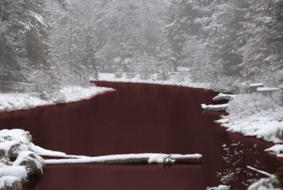 Water Iskitimka River is a deep red colour while the banks are blanketed in white snow.