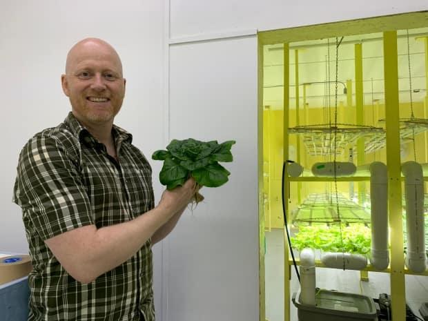 Dwight Budden proudly holds his fresh greens. He's glad his farm, which started as a hobby for him and his father, can be a part of the solution for food security, especially in central Newfoundland.