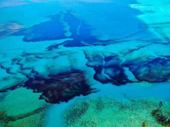 An aerial photograph shows oil drifting ashore over coral reefs from the MV Wakashio (EPA)