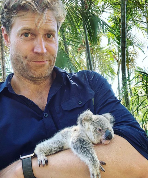 TV vet Dr Chris Brown holding koala as he issues warning about giving them water during the bushfire crisis.