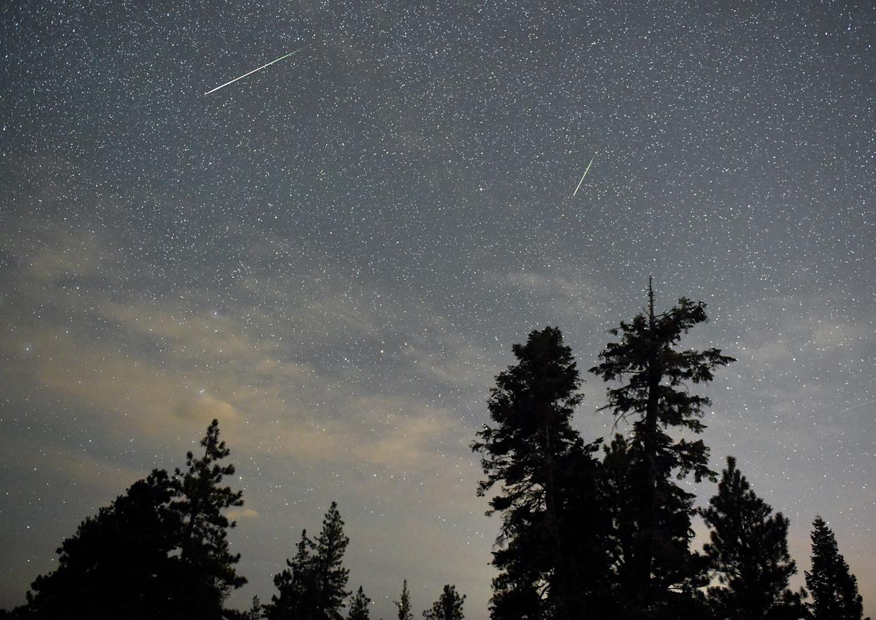 A pair of Perseid meteors streak across the sky above desert pine trees on Aug. 13, 2015, in the Spring Mountains National Recreation Area, Nevada. (Photo: Ethan Miller via Getty Images)