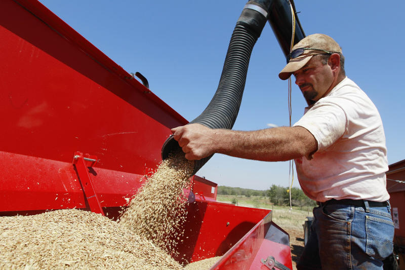 In this Wednesday, Sept. 12, 2012 photo, John Honeywell directs a mixture of seed wheat and rye into a grain drill to plant winter wheat for cattle grazing near Orlando, Okla. The U.S. Drought Monitor report, released Thursday, shows 42 percent of Oklahoma in exceptional drought, the worst rating, and 53 percent in extreme drought, the second worst. Wheat farmers in southwestern Oklahoma are hoping for a strong El Nino to bolster what is the state's number one cash crop, said David Gammill, a wheat farmer and member of the Oklahoma Wheat Commission board of directors. (AP Photo/Sue Ogrocki)