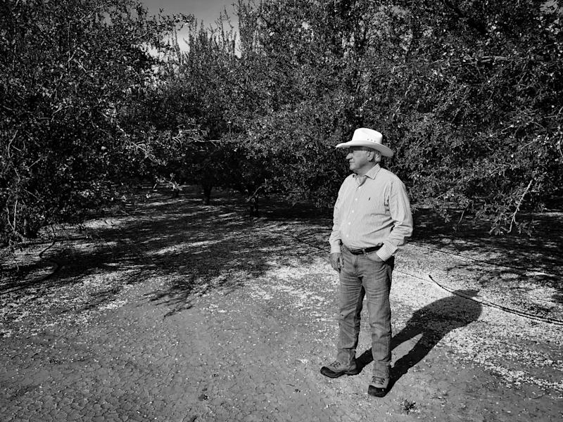 Joe Del Bosque stands in his almond orchard in Firebaugh, Calif. (Photo: Holly Bailey/Yahoo News)