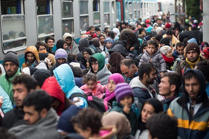 The mass influx of asylum seekers into Germany stopped after several Balkans transit countries shuttered their borders and the EU reached a deal with Turkey to stop arrivals to the Greek islands (AFP Photo/Vladimir Simicek)