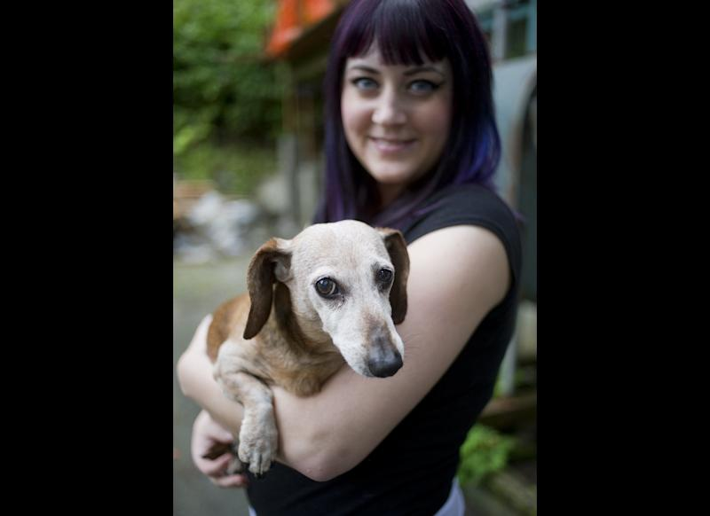 Brook Collins holds her dog, Fudge, at her home in Juneau, Alaska on Tuesday, Aug. 30, 2011. Collins punched a black bear in the snout after the bear attacked Fudge on Sunday, Aug. 28.