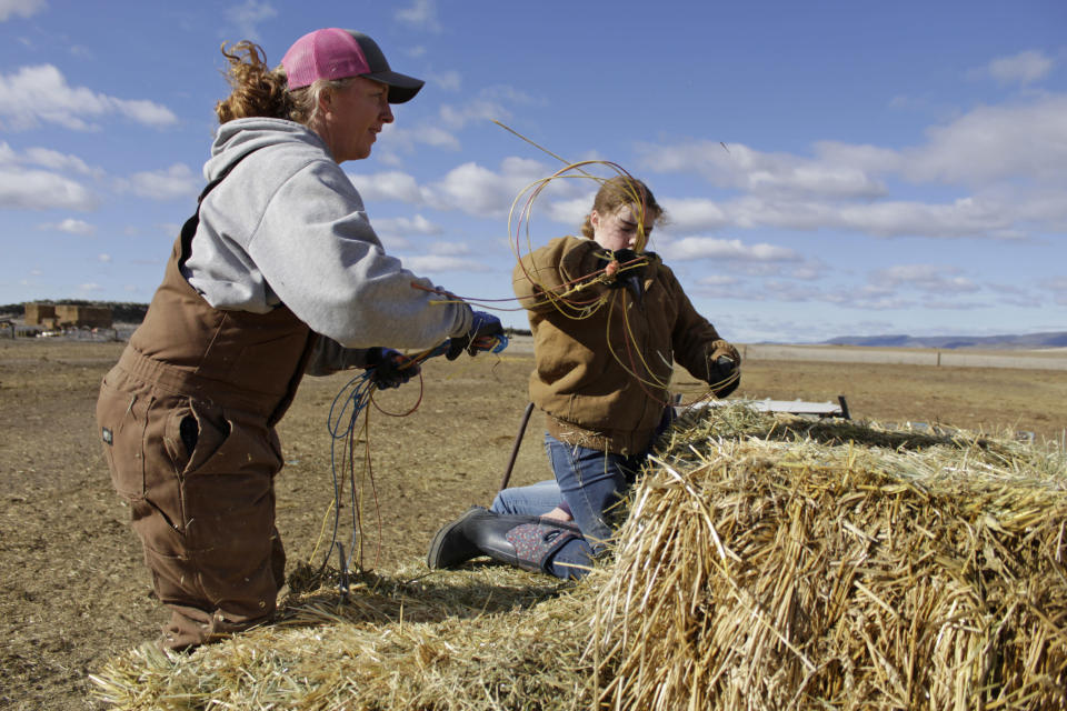 FILE - In this March 2, 2020, file photo, Erika DuVal and her daughter Helena prepare to toss hay bales to cattle from the back of a truck at their farm in Tulelake, Calif. Federal officials announced Wednesday that farmers who rely on a massive irrigation project spanning the Oregon-California border will get 8% of the deliveries they need amid a severe drought. (AP Photo/Gillian Flaccus, File)