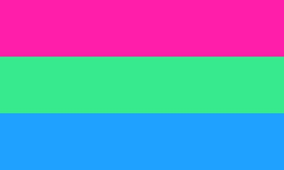 """<p>Polysexual (attracted to multiple but not all genders, unlike pansexual) is still similar to the pansexual flag, with green representing nonconforming genders and pink and blue female and male, respectively. Polysexuality can sometimes be expressed as attraction to masculinity/femininity, not gender. The flag was created on <a href=""""https://www.unco.edu/gender-sexuality-resource-center/resources/pride-flags.aspx"""" rel=""""nofollow noopener"""" target=""""_blank"""" data-ylk=""""slk:Tumblr"""" class=""""link rapid-noclick-resp"""">Tumblr</a> in 2012.</p>"""