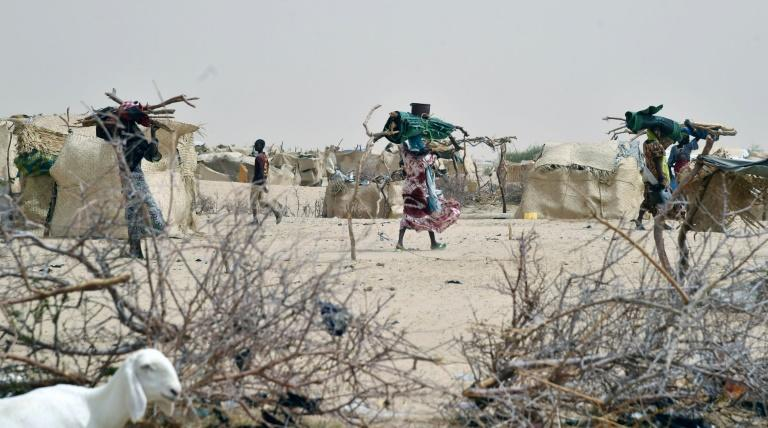 """Africa's Lake Chad region has been hit by a """"perfect storm"""" of challenges, Swedish diplomat Carl Skau said, including terrorism and the effects of climate change"""