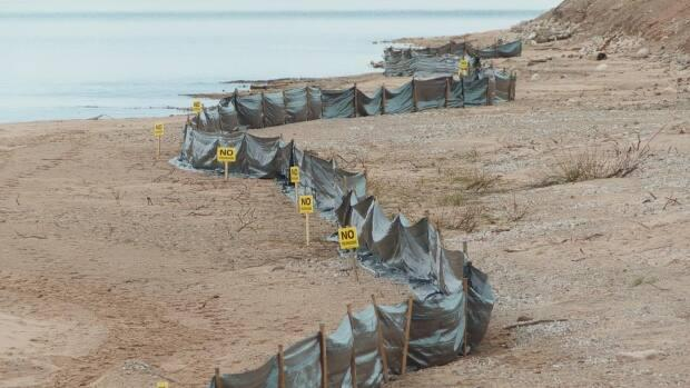 The park's developer Stirling Group has lined the beach portion of the park with black silt shield; a barrier to keep construction debris out of the water. The signs also keep walkers a safe distance from the site.