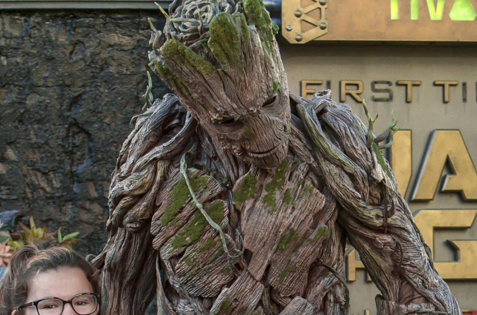 """<p>A life-sized (adult) Groot roams around outside the <em>Guardians</em> ride for a guest photo op. During the """"Summer of Heroes"""" event, other Marvel mainstays, including Spider-Man, Captain America, Black Widow, and Hawkeye, will be stationed throughout Disney's California Adventure's Hollywood Land. (Photo: Disneyland Resort) </p>"""