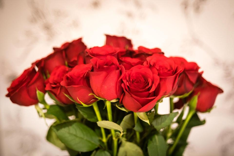 """<p><strong>For the first time ever, Bloom & Wild will not sell red roses for <a href=""""https://www.housebeautiful.com/uk/lifestyle/shopping/g26236754/valentines-day-flowers/"""" rel=""""nofollow noopener"""" target=""""_blank"""" data-ylk=""""slk:Valentine's Day"""" class=""""link rapid-noclick-resp"""">Valentine's Day</a> because the annual holiday on 14th February 'shouldn't be about ticking a box with a generic dozen', the online florist explains.</strong></p><p>Red roses is predictably the go-to romantic flower of choice and, in the art of floriography, red roses symbolise love and enduring passion. No other flower states this quite as effectively as the red rose.</p><p>But are red roses as popular as they once were? Last year, the majority of <a href=""""https://go.redirectingat.com?id=127X1599956&url=https%3A%2F%2Fwww.bloomandwild.com%2F&sref=https%3A%2F%2Fwww.housebeautiful.com%2Fuk%2Flifestyle%2Fshopping%2Fg35318824%2Fbloom-wild-valentines-day-red-roses%2F"""" rel=""""nofollow noopener"""" target=""""_blank"""" data-ylk=""""slk:Bloom & Wild"""" class=""""link rapid-noclick-resp"""">Bloom & Wild</a> customers sent a bright or pastel bouquet for Valentine's Day over traditional roses, according to research from its recent customer survey (1,000 respondents, January 2021).</p><p>In fact, 58 per cent said red roses are cliche, 70 per cent of women would prefer something other than red for Valentine's Day, and 79 per cent want a unique and thoughtful gift over something traditional like red roses.</p>"""
