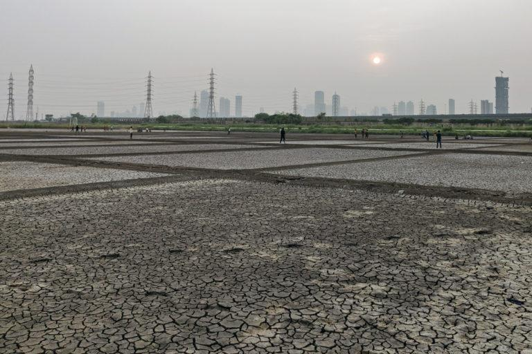 The Bharatiya Janata Party has already cleared its intentions to open up the salt pans for real estate development while their ally Shiv Sena is strictly against it. image credit: Swayam Khanna.