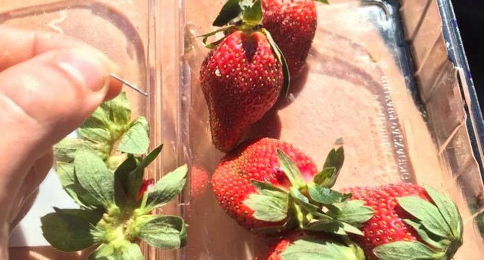 Sewing needles have been found in Berrylicious and Berry Obsession strawberries bought in Woolworths. Source: Facebook/ Joshua Gane