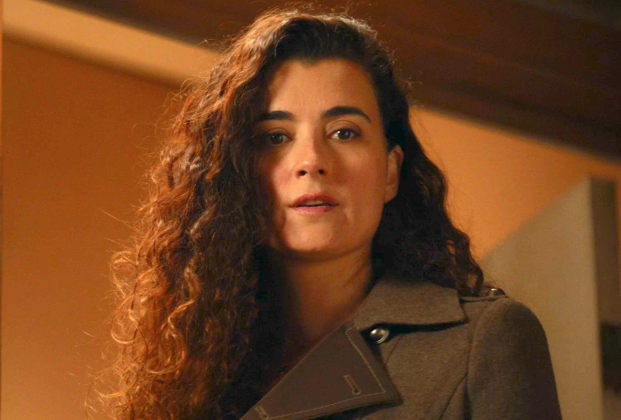 Tony and ziva pregnant  'NCIS' Bids a Bittersweet Farewell