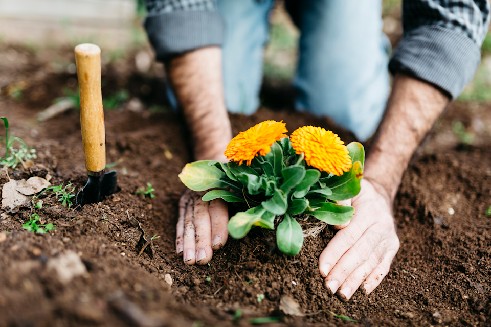 """<p>""""Gardening is a natural stress reliever when you immerse yourself in the sunlight and nature,"""" says Hall. Researchers agree. Digging in the dirt can lower cortisol levels and even symptoms of depression, a recent <a href=""""https://www.ncbi.nlm.nih.gov/pubmed/26030115"""" rel=""""nofollow noopener"""" target=""""_blank"""" data-ylk=""""slk:study"""" class=""""link rapid-noclick-resp"""">study</a> in <em>Alternative Therapies in Health & Medicine </em>shows. For an <a href=""""https://www.ncbi.nlm.nih.gov/pmc/articles/PMC5153451/"""" rel=""""nofollow noopener"""" target=""""_blank"""" data-ylk=""""slk:added social benefit"""" class=""""link rapid-noclick-resp"""">added social benefit</a>, visit a community garden with a friend. (<a href=""""https://www.prevention.com/health/g27586276/benefits-of-indoor-plants/"""" rel=""""nofollow noopener"""" target=""""_blank"""" data-ylk=""""slk:Indoor plants can have a similar stress-busting impact, too."""" class=""""link rapid-noclick-resp"""">Indoor plants can have a similar stress-busting impact, too.</a>)</p>"""