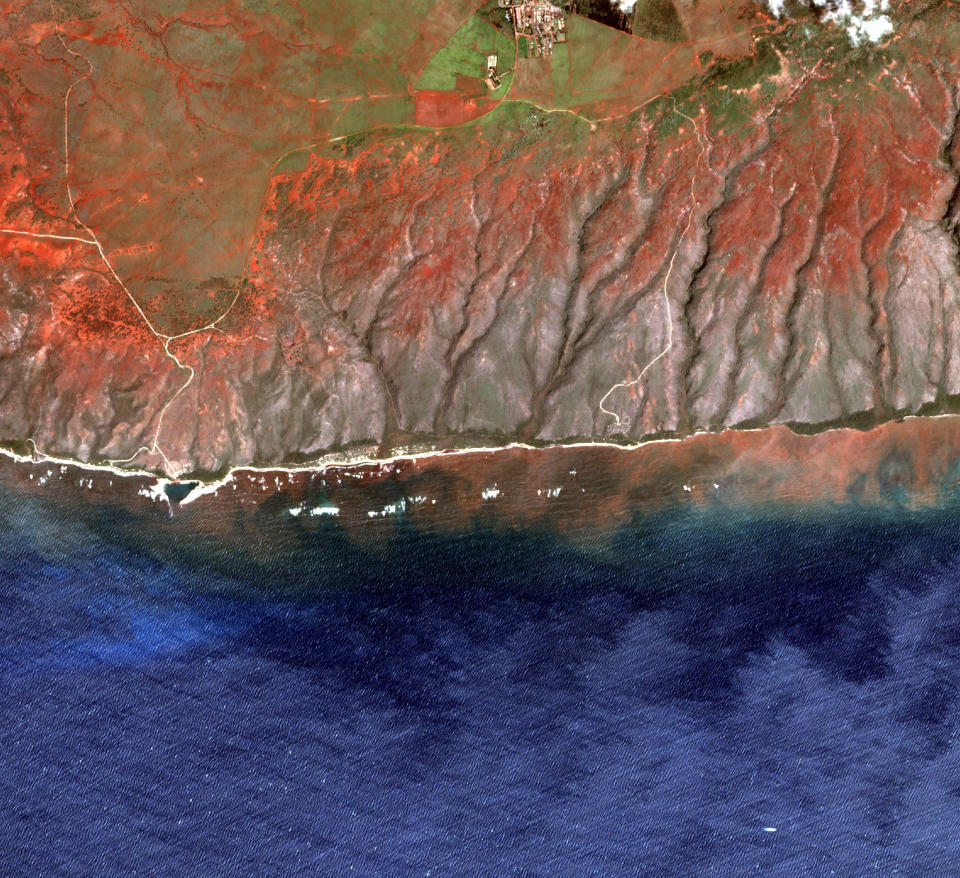 In this undated 2020 satellite image provided by the Arizona State University's Center for Global Discovery and Conservation Science, Allen Coral Atlas, runoff from the island of Molokai in Hawaii is shown flowing into the ocean. Axis deer, a species native to India that were presented as a gift from Hong Kong to the king of Hawaii in 1868, have fed hunters and their families on the rural island of Molokai for generations. But for the community of about 7,500 people where self-sustainability is a way of life, the invasive deer are a cherished food source but also a danger to the island ecosystem. Now, the proliferation of the non-native deer and drought on Molokai have brought the problem into focus. Hundreds of deer have died from starvation, stretching thin the island's limited resources. When deer devour fruits, vegetables and other plants, it leads to to erosion and runoff into the ocean that alters the island's coral reef— another important food source. (Arizona State University's Center for Global Discovery and Conservation Science, Allen Coral Atlas via AP)