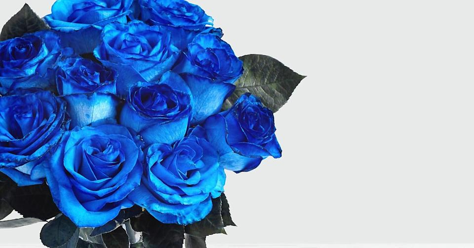 """<p>The mesmerizing <a href=""""https://www.popsugar.com/buy/Blue-Moon-Roses-444282?p_name=Blue%20Moon%20Roses&retailer=proflowers.com&pid=444282&price=70&evar1=casa%3Aus&evar9=46127505&evar98=https%3A%2F%2Fwww.popsugar.com%2Fhome%2Fphoto-gallery%2F46127505%2Fimage%2F46128460%2FBlue-Moon-Roses&list1=shopping%2Cgift%20guide%2Cflowers%2Chouse%20plants%2Cplants%2Cmothers%20day%2Cgifts%20for%20women&prop13=api&pdata=1"""" class=""""link rapid-noclick-resp"""" rel=""""nofollow noopener"""" target=""""_blank"""" data-ylk=""""slk:Blue Moon Roses"""">Blue Moon Roses </a> ($70) are so unique and beautiful to look at!</p>"""