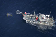 In this aerial photo provided by Joel Schumacher, scientists in a research boat pursue a Pacific leatherback turtle in the Pacific Ocean off California in September 2016. All seven distinct populations of leatherbacks in the world are troubled, but a new study shows an 80% population drop in just 30 years for one extraordinary sub-group that migrates 7,000 miles across the Pacific Ocean to feed on jellyfish in cold waters off California. Scientists say international fishing and the harvest of eggs from nesting beaches in the western Pacific are to blame. (Joel Schumacher via AP)