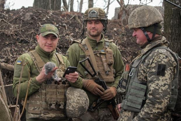 A service member of the Ukrainian armed forces holds a kitten while speaking with his comrades at fighting positions on the line of separation near the rebel-controlled city of Donetsk on Thursday.