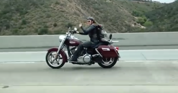 Dog spotted on motorbike at 70mph (video)