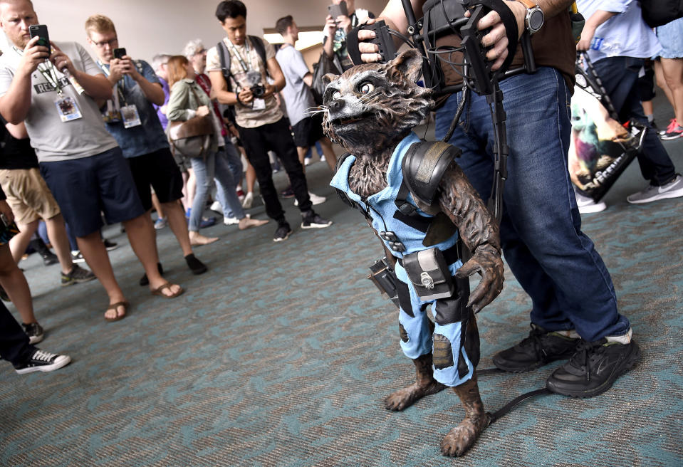<p>Mike Asanuma, from Los Angeles, controls a puppet of Rocket from <em>Guardians of the Galaxy</em> at Comic-Con International on July 20 in San Diego. (Photo: Chris Pizzello/Invision/AP) </p>