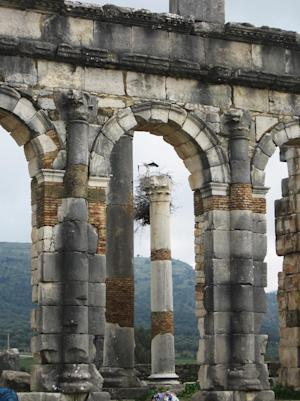 Ruins of a basilica in Volubilis, a Roman city in Morocco.
