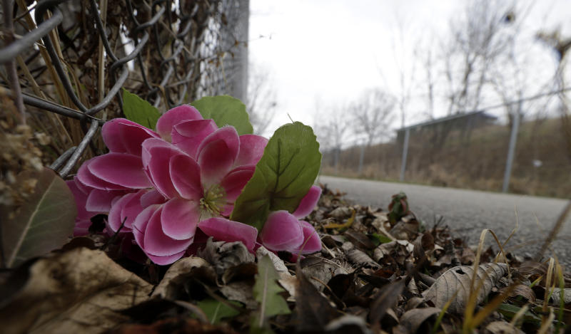 A flower sits near the bike path at Meyers Lake Thursday, Dec. 6, 2012, in Evansdale, Iowa, where cousins Lyric Cook, 10, and Elizabeth Collins, 8, disappeared in July while riding their bikes. Family members are waiting to hear whether the two bodies discovered by hunters on Wednesday are the two missing cousins. (AP Photo/Charlie Neibergall)